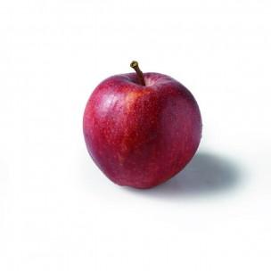 Pomme coxorange